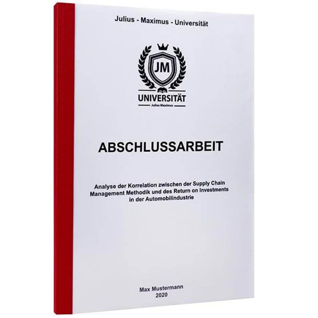 dissertation 100 seiten
