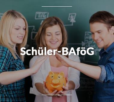 BAföG Amt Braunschweig Schüler-BAföG
