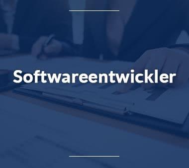 Projektmanager Softwareentwickler