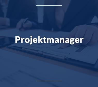 Projektmanager Wirtschaftsprüfer