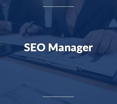 Data-Scientist-SEO-Manager