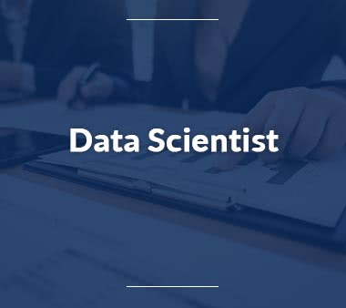 IT Manager Data-Scientist