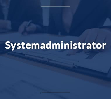 IT Manager Systemadministrator