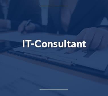Junior-Consultant-IT-Consultant