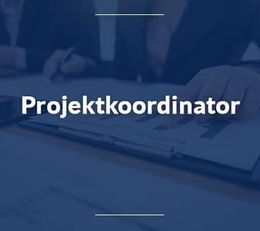 Fluglotse Projektkoordinator
