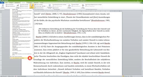 Literaturverzeichnis Word Platzhalter