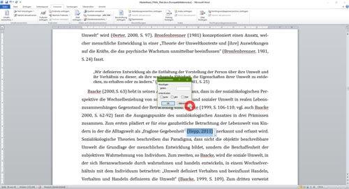 Literaturverzeichnis Word Seitenzahl Quellenangabe einfügen