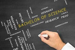 Bachelor of Science Studium