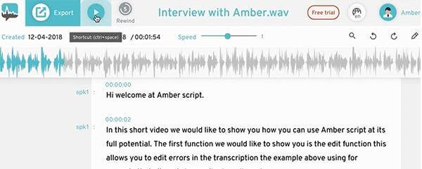 Audiotranskription fertige Transkript