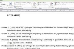 Abbildungsverzeichnis Word Literaturverzeichnis